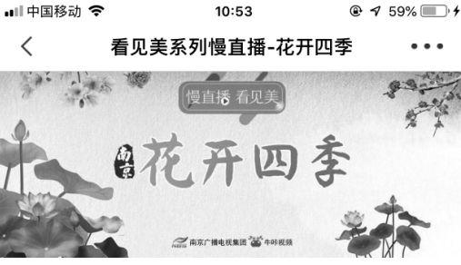 """南京广电:立体呈现""""疫""""线彰显担当"""