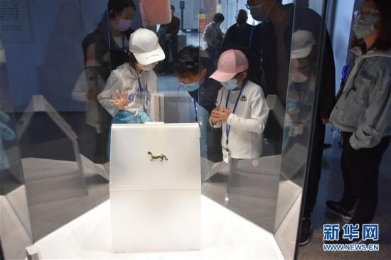 (文化)(2)秦始皇帝陵博物院恢复开放