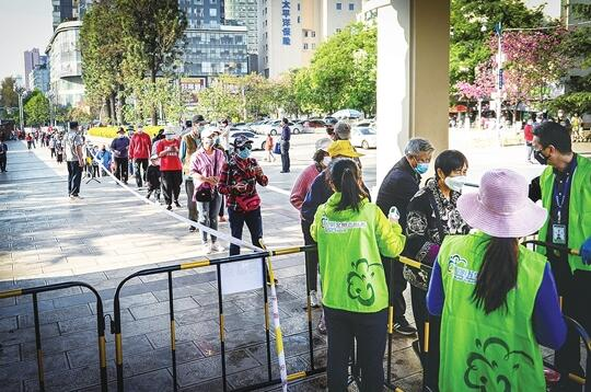 昆明动物园开放首日:圆通樱潮进入尾声4904人次入园赏花