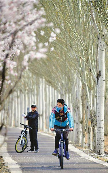 春暖花开,宁夏旅游业渐渐苏醒