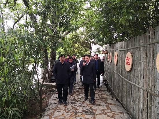 桂林市田园综合体创建和粮食生猪生产工作推进会与会人员到兴安县参观