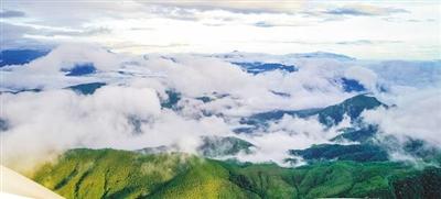 海南省积极推进热带雨林国家公园体制试点建设,筑牢海南绿色生态