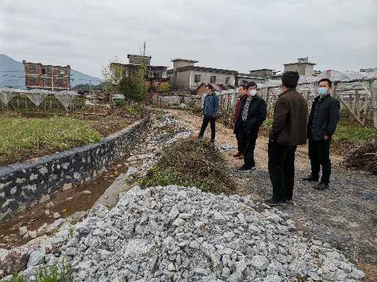 桂林市统计局调研组一行赴兴安县调研一季度农业生产情况