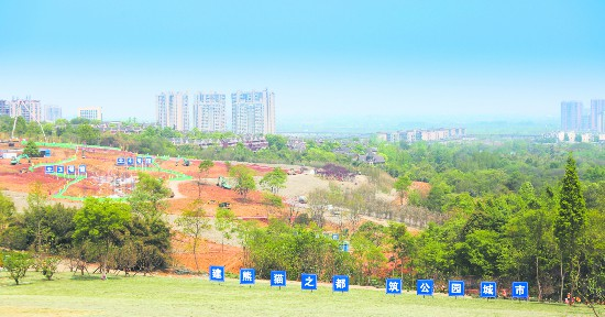 成都锦城公园:城市未来美好生活的体验空间