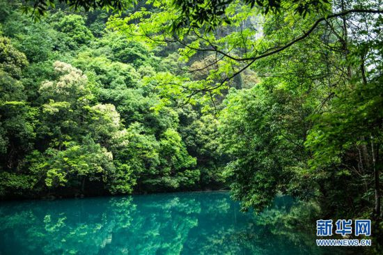 (春季美丽生态)(7)贵州荔波:青山秀水春光美