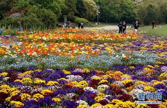 """(环境)(1)上海浦东:世纪公园的""""彩色季"""""""