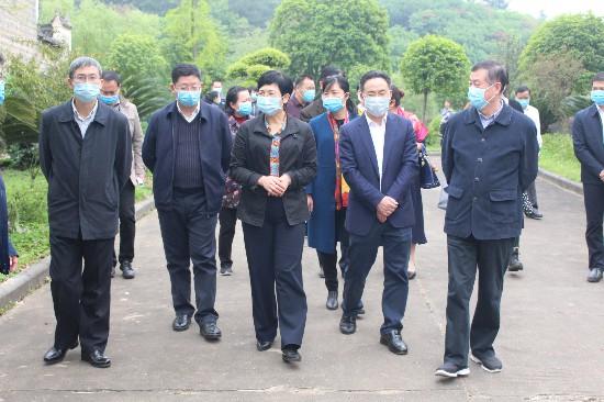 自治区人大常委会副主任杨静华率队到兴安县调研