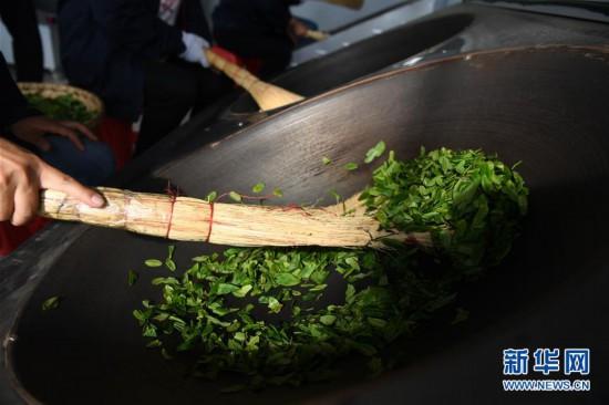 (脱贫攻坚)(5)大别山里茶飘香
