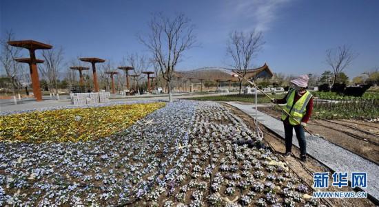 (社会)(1)北京世园会园区景观恢复工作启动