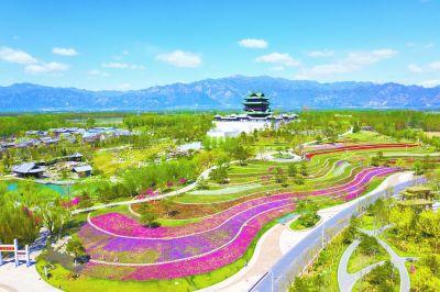 世园花卉景观全面恢复