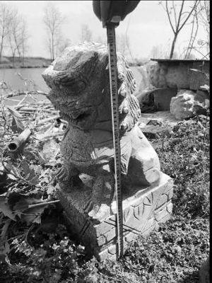 鹽城大豐老漢聽說祖墳前擺石獅子氣派 一口氣偷了18隻