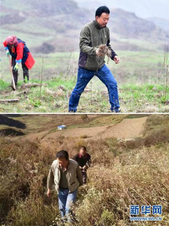 """(脱贫攻坚·图片故事)(6)扶贫相册——藏族村寨的脱贫""""贴心人"""""""