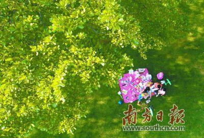 春夏珠三角 假日漫生活