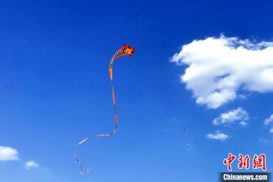 章鱼、蜈蚣、玩具熊……特色风筝亮相风筝音乐节
