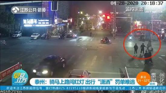 泰州几个年轻人骑白马上路还闯红灯获罚