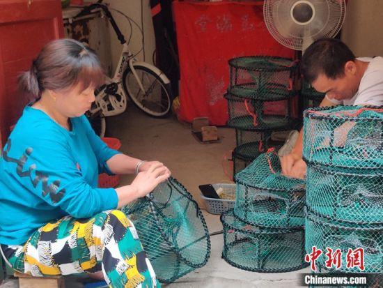 图为下岐村村民江白弟夫妻俩在织蟹笼。叶秋云摄