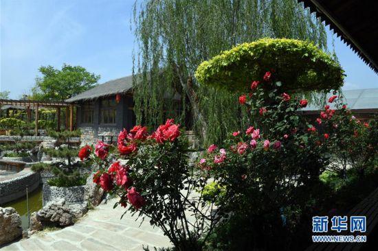 (经济)(5)天津蓟州:农家院换新颜