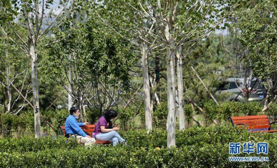 (环境)(1)为城市添绿 为市民遮荫