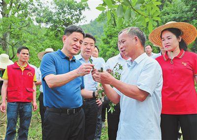 李新元:发展乡村特色产业 创造更加幸福的生活