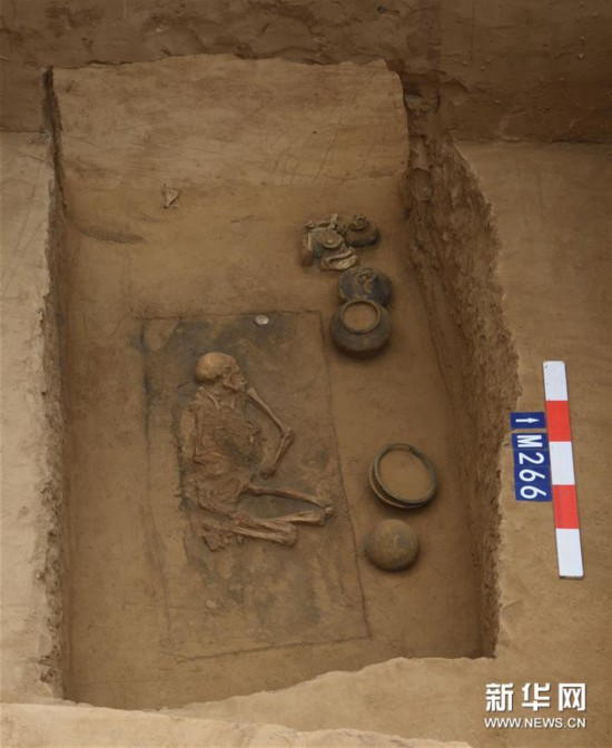 (图文互动)(8)黄河边发现大型古墓群 出土文物2000余件