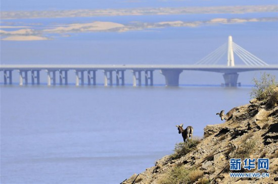 """(环境)(1)内蒙古:甘德尔山上的岩壁""""精灵"""""""