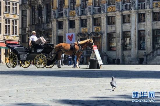 (国际)(3)比利时布鲁塞尔大广场:游客减少 砖缝长草