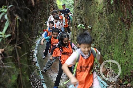 30名小朋友徒步6公里 征服南山荒野步道