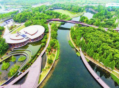 """南京河西城市生态公园打造""""水域仙境"""""""