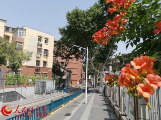 南京市雨花台区:百年小巷焕发新颜