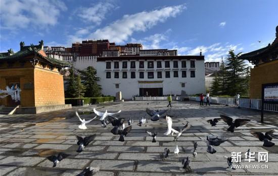 (社会)(5)布达拉宫恢复对外开放