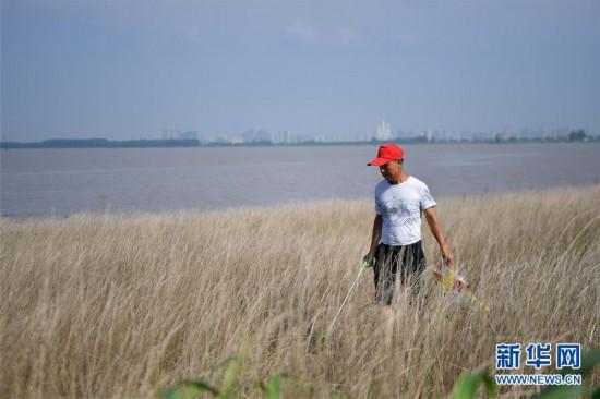 (新华全媒头条・图文互动)(7)大湖新歌――我国两大淡水湖全面生态修复进行时