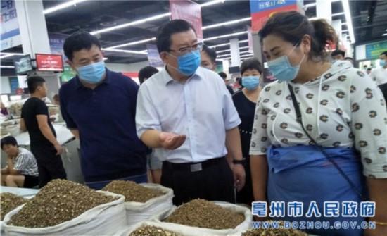 杜延安调研药品药材生产经营综合整治工作