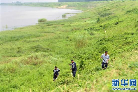 (社会)(1)江西南昌:巡查排险 保障汛期安全