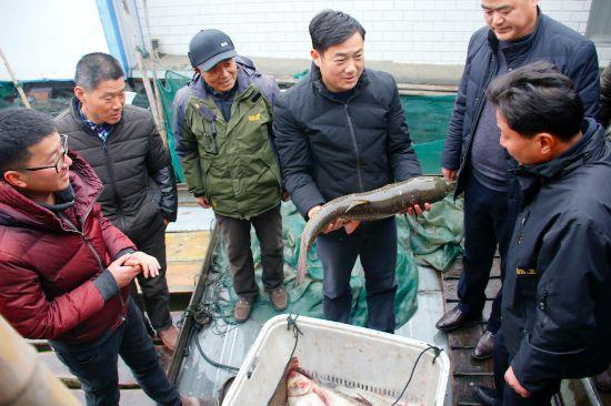 江蘇金湖:鄉村振興路上黨旗紅