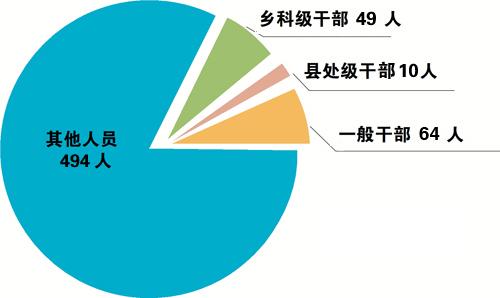 合肥:上半年立案600件处分576人