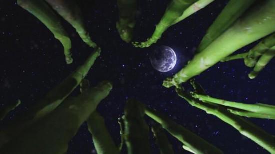 """上海电视艺术家协会""""首届短视频大赛""""落幕 优秀作品记录生活百态"""