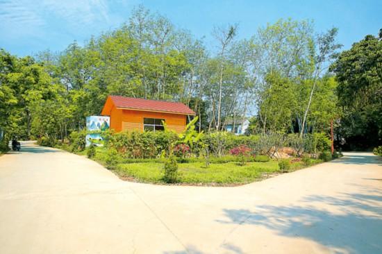 儋州大成鎮新風村干淨整潔的村道.jpg