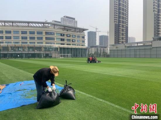 图为大连人足球青训基地里,工作人员对草坪进行休整。 邓涵竹 摄