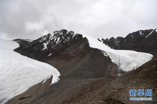 (图文互动)(2)天山一号冰川保护区成为野生动物天堂