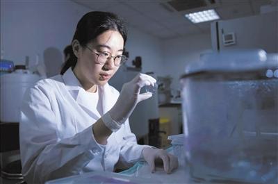 培养科研后备军从本科生暑期走进实验室开始