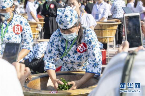 (社会)(2)斗茶艺 赛茶香
