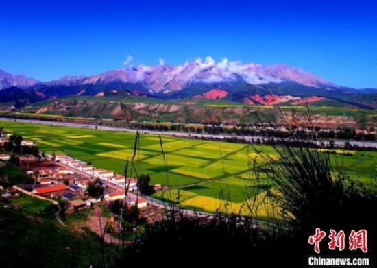 图为青海省海北藏族自治州草原风光。海北州文体旅游广电局供图