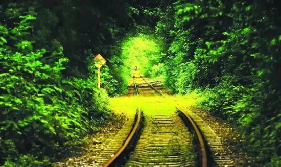 美丽的爱情隧道优雅的诗歌小镇