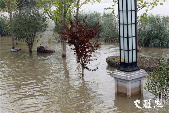 長江江蘇段防汛應急響應降級 南京水位消退不少