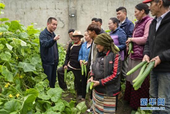 (图文互动)(4)西藏首个边境基层供销合作社在玉麦乡挂牌成立