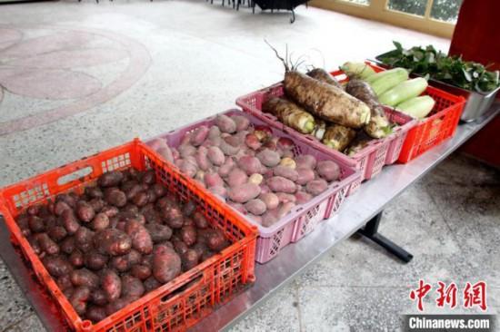 """图为亚东边检站""""警营菜园""""喜获丰收的蔬菜。 王东东 摄"""