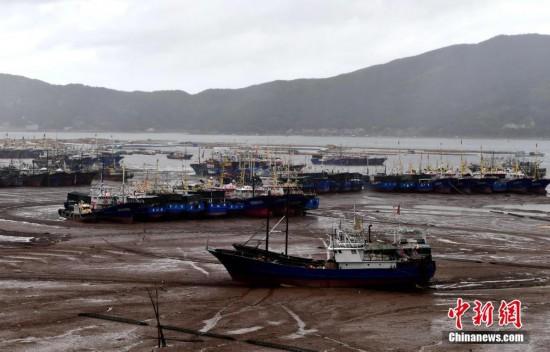 """台风""""黑格比""""来袭 福建渔民上岸避风"""
