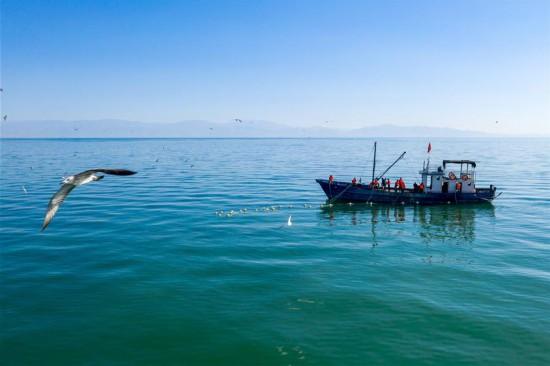 (经济)(1)新疆博斯腾湖:渔民秋捕忙