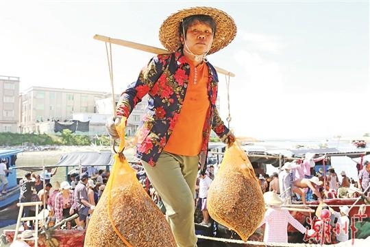 潮州:薄殼肥美時 碼頭聲如沸