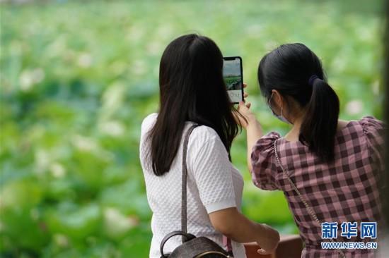 """(图文互动)(1)武汉""""免票游""""力度升级:再推5万张""""惠游卡"""""""